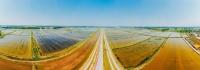 产业兴旺引领区  三产融合示范区 江苏盱眙打造农业高质量发展样板