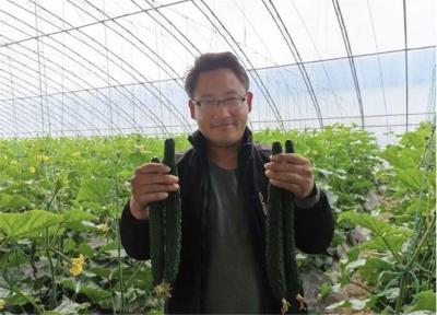 淮阴区:农业产业花开遍地  绘就乡村振兴美景
