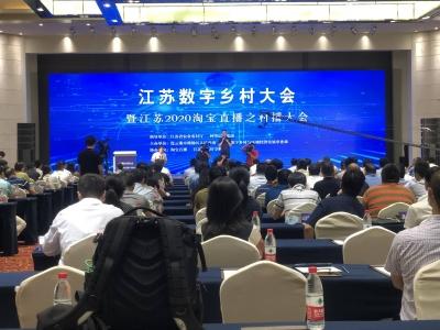 江苏数字乡村大会暨江苏2020淘宝直播之村播大会在连云港市召开