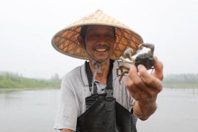 """江苏洪泽:乘风破浪""""六月黄"""",渔民致富奔小康"""
