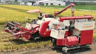 北斗、5G加持,水稻种植实现全程无人机械化作业