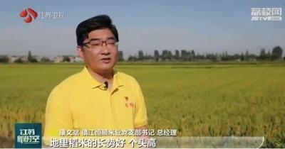 【走向我们的小康生活】镇江丹阳:村企联建 稻花香里说丰年