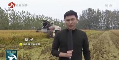 良種良法促豐收 全省水稻迎來大面積收割