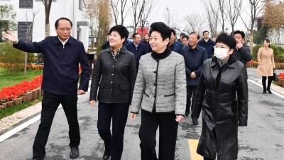 省政协主席黄莉新点赞淮安农房改善工作