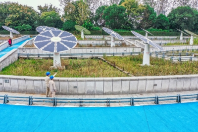 """【走向我们的小康生活】""""绿色+能源"""" 开启岛城小康新模式"""