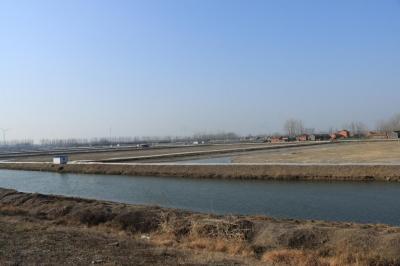 【走向我们的小康生活】盱眙做实党建基础工作  助推农业特色产业发展