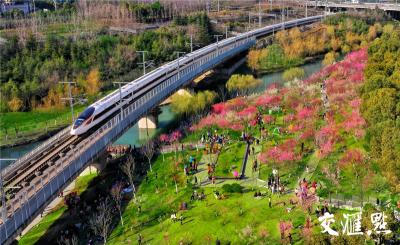 長三角鐵路清明假日客流總數預計超千萬