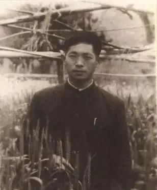 """追憶""""雜交水稻之父""""袁隆平:曾在南京讀高中 讓江蘇鹽堿地飄出稻香"""