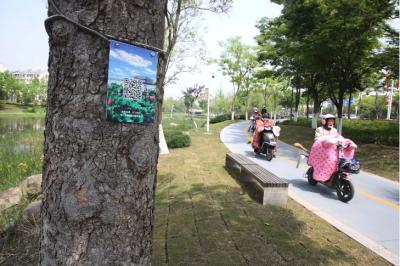 """江苏泰州:30多万棵树有了""""智慧身份证"""""""