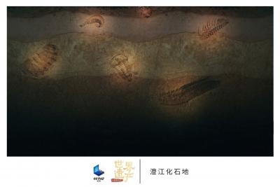 """帶你""""云打卡""""中國的世界遺產"""