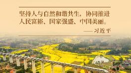 大党丨人民富裕 中国美丽