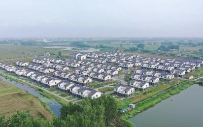 【新时代 新作为 新篇章】江苏洪泽:青山绿水带笑颜,白马湖畔唱欢歌