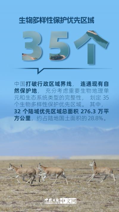 我们的共同家园 保护生物多样性,中国这样做