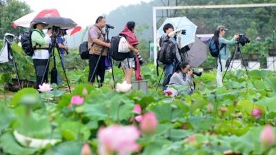 【新时代 新作为 新篇章】江苏金湖:产品走出去 游客走进来 好农路让老百姓走稳乡村振兴步伐!